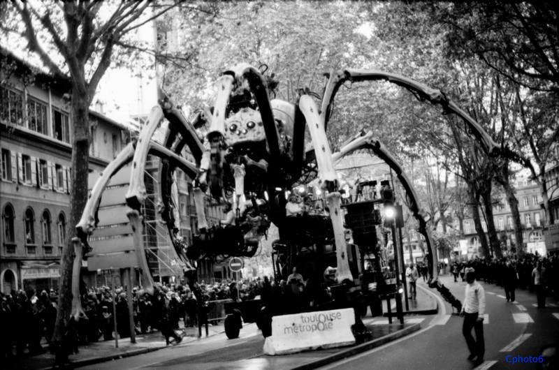 minotaure & araignée à Toulouse